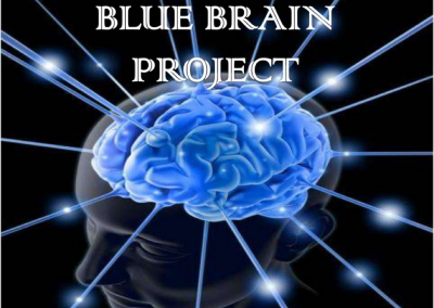 17 BlueBrainProject