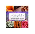 Webinaire « À la découverte de la palette du parfumeur », Osmothèque Conservatoire International des Parfums – 23 février 2021 [FR][EN]